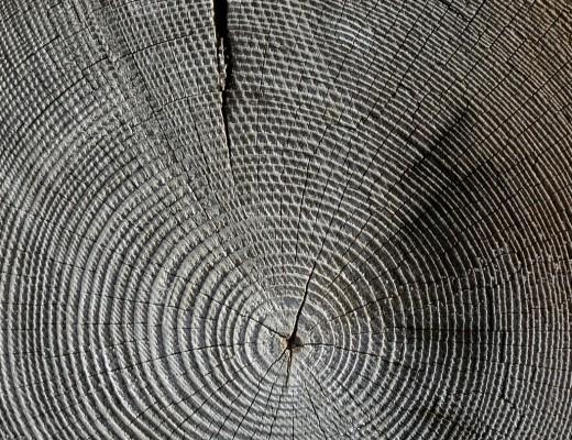 wood-618673_1280